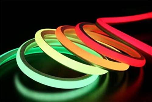 Brightness of neon tape light
